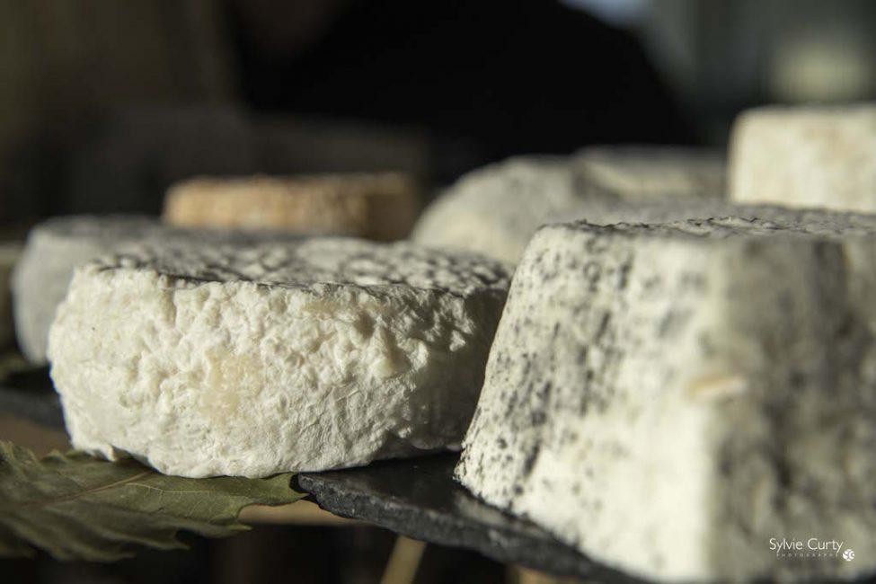 Buffet fromages fromagerie l'épicurium La Rochelle (84)