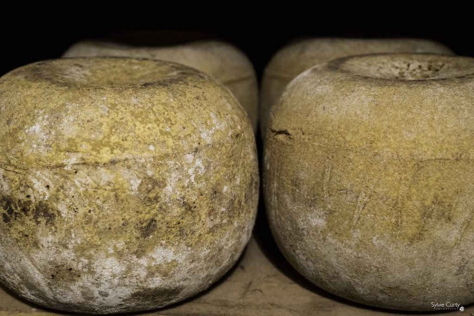cave affinage fromages l'épicurium la Rochelle 1 (21)
