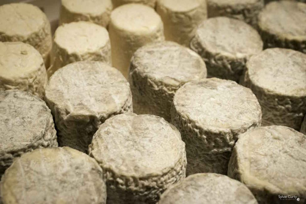 cave affinage fromages l'épicurium la Rochelle 1 (34)