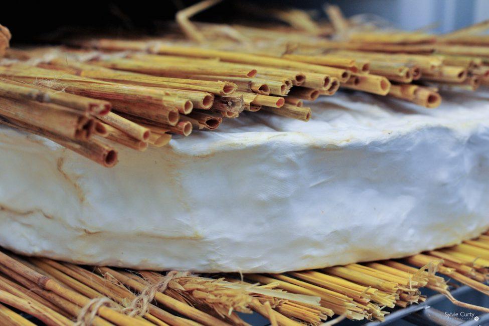 cave affinage fromages l'épicurium la Rochelle 1 (5)