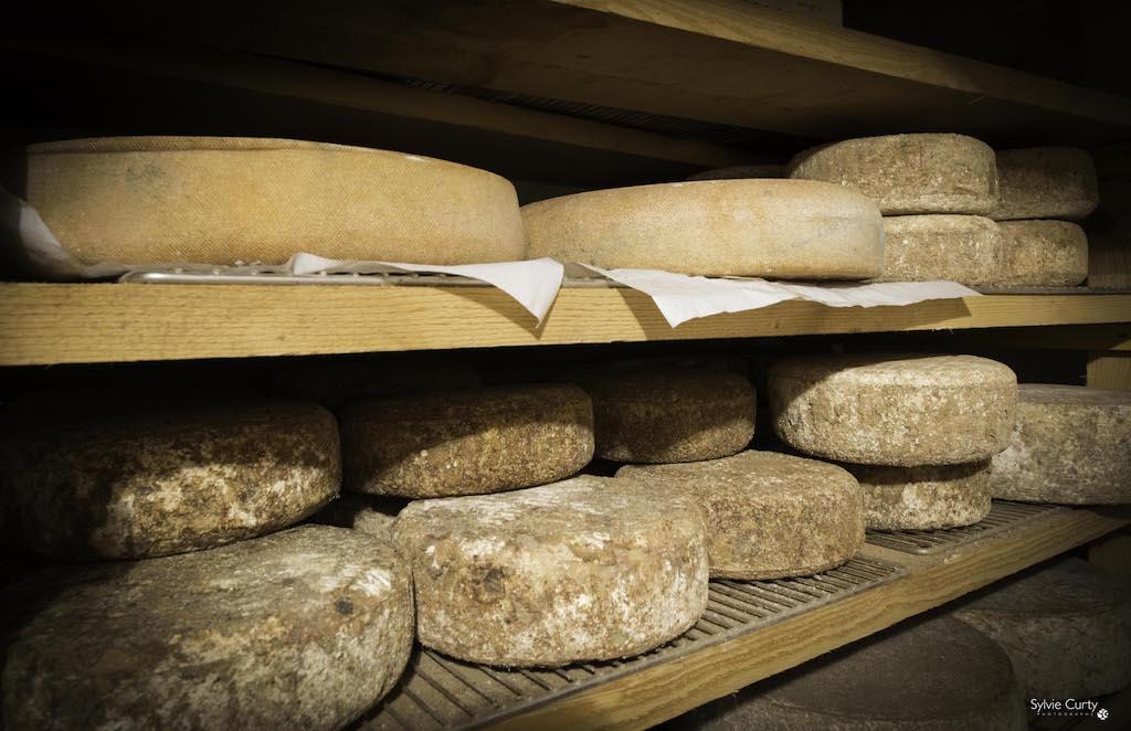 cave affinage fromages l'épicurium la Rochelle 1 (10)