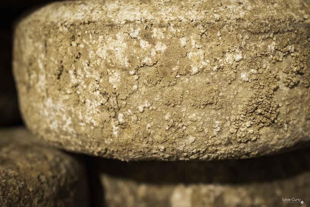 cave affinage fromages l'épicurium la Rochelle 1 (13)