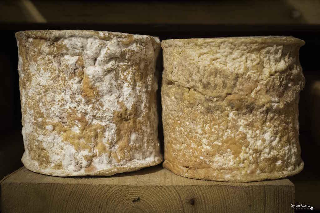 cave affinage fromages l'épicurium la Rochelle 1 (14)