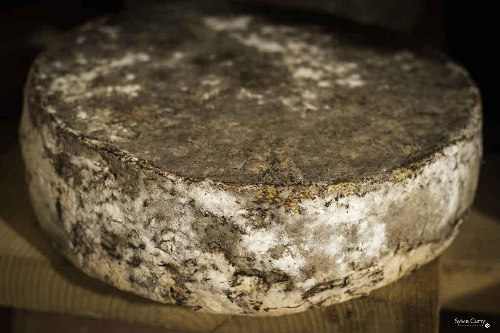 cave affinage fromages l'épicurium la Rochelle 1 (28)