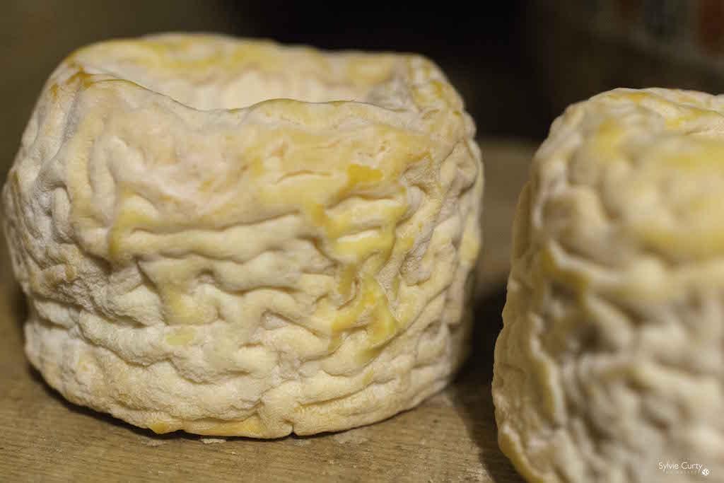 cave affinage fromages l'épicurium la Rochelle 1 (31)