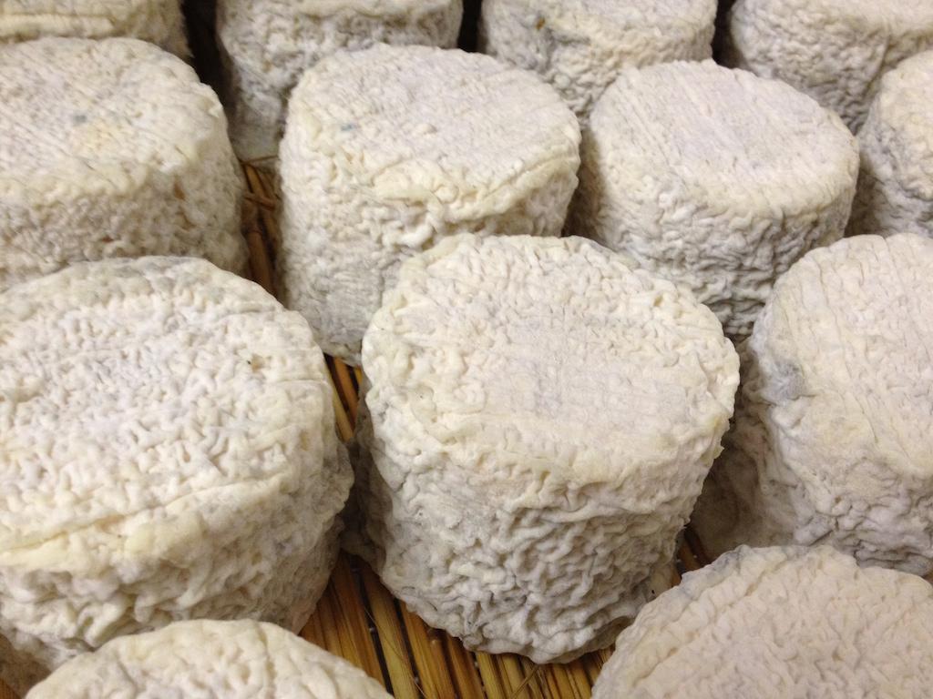 cave affinage fromages l'épicurium la Rochelle 1 (50)