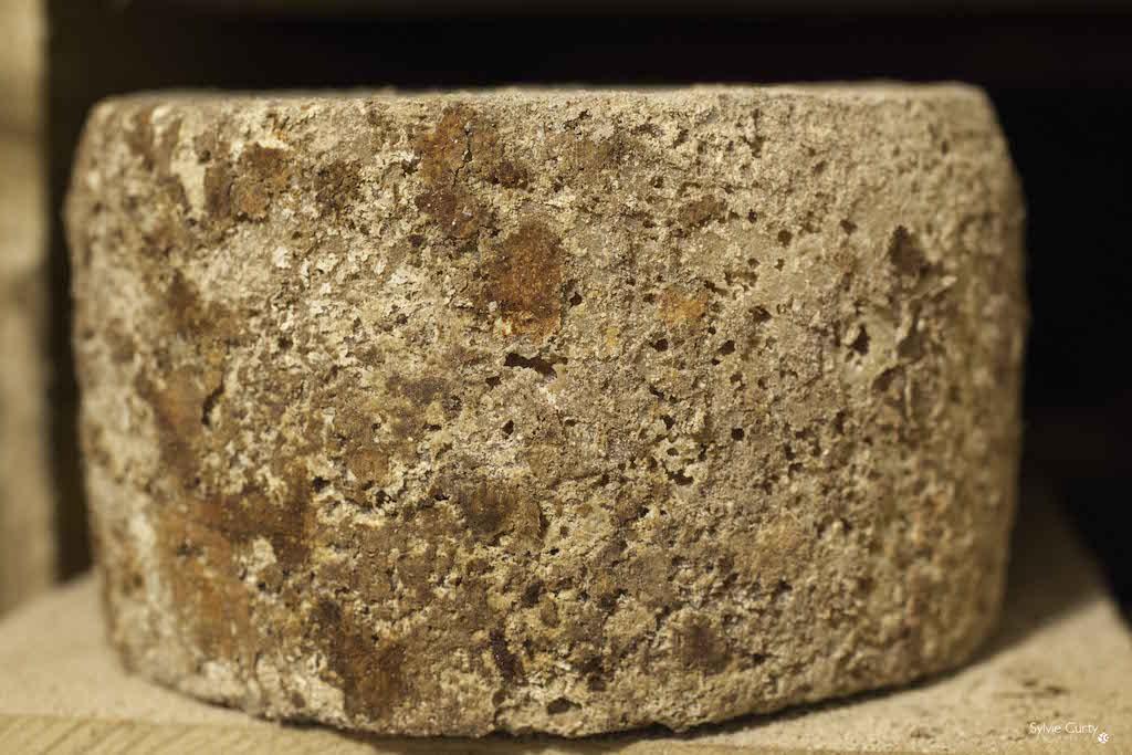 cave affinage fromages l'épicurium la Rochelle 1 (61)