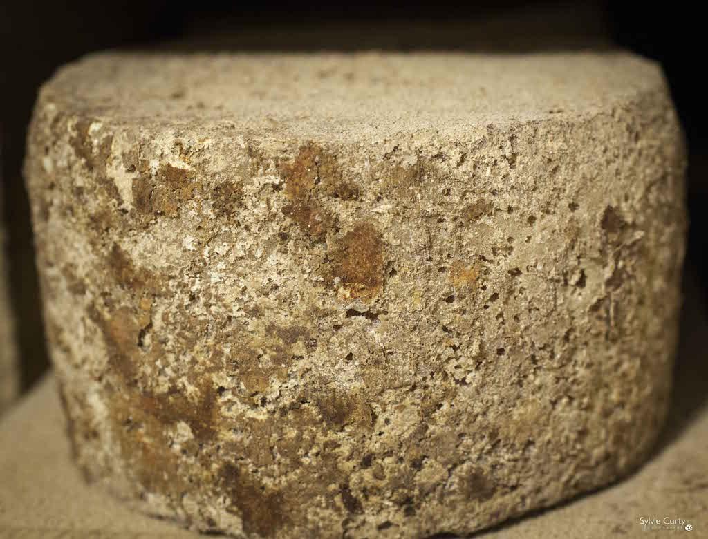 cave affinage fromages l'épicurium la Rochelle 1 (68)