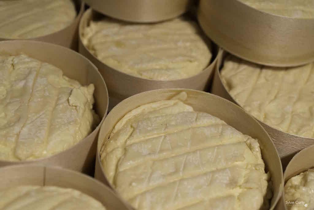 cave affinage fromages l'épicurium la Rochelle 1 (77)