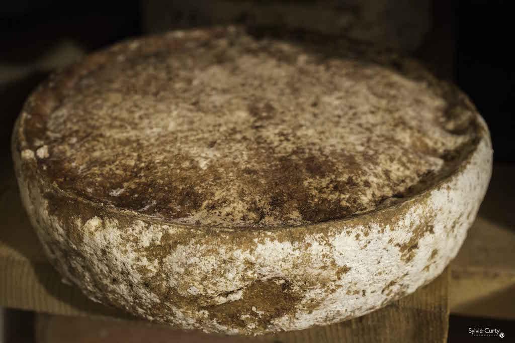 cave affinage fromages l'épicurium la Rochelle 1 (83)